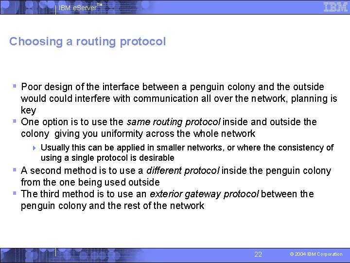 IBM e. Server™ Choosing a routing protocol § Poor design of the interface between