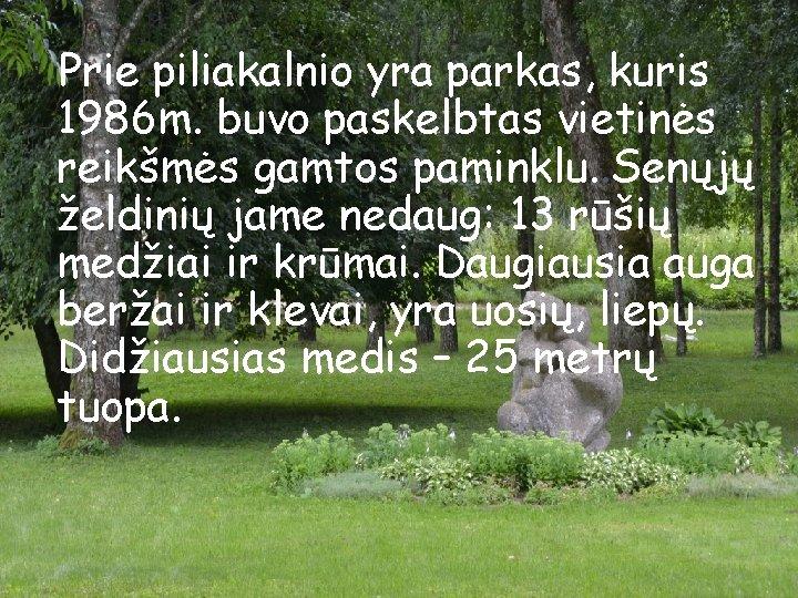 Prie piliakalnio yra parkas, kuris 1986 m. buvo paskelbtas vietinės reikšmės gamtos paminklu. .