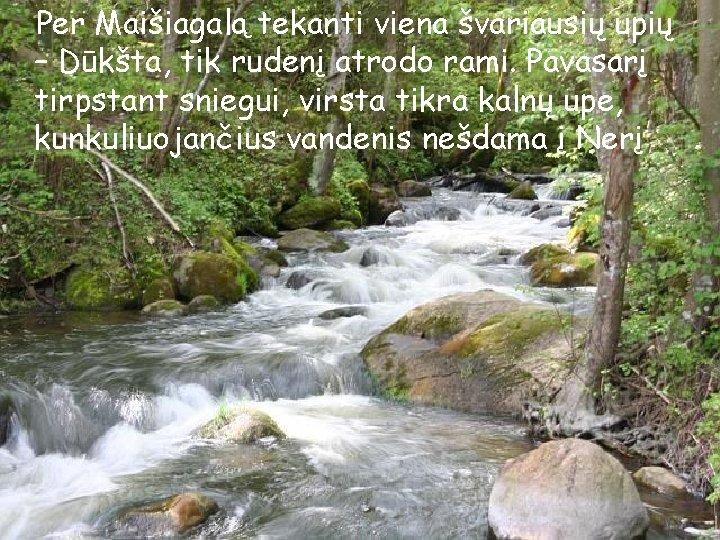 Per Maišiagalą tekanti viena švariausių upių – Dūkšta, tik rudenį atrodo rami. Pavasarį tirpstant