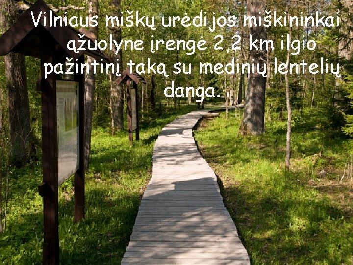 Vilniaus miškų urėdijos miškininkai ąžuolyne įrengė 2, 2 km ilgio pažintinį taką su medinių