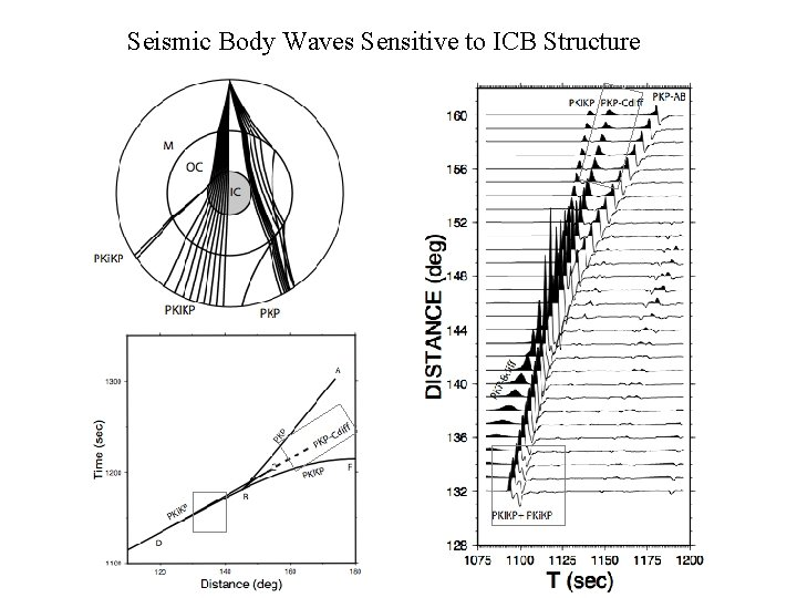Seismic Body Waves Sensitive to ICB Structure