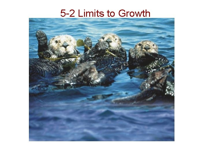 5 -2 Limits to Growth