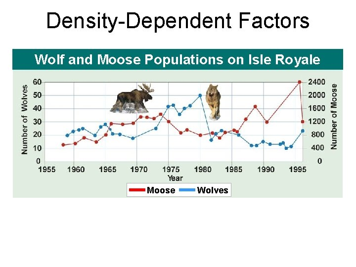 Density-Dependent Factors Wolf and Moose Populations on Isle Royale Moose Wolves