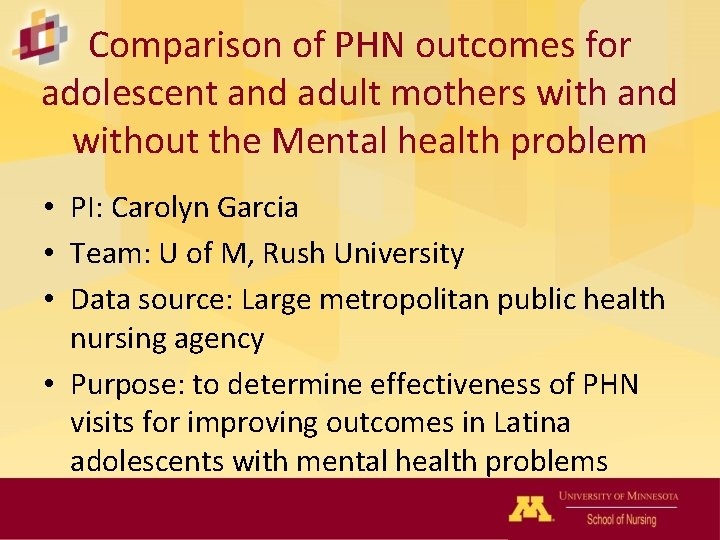 Comparison of PHN outcomes for adolescent and adult mothers with and without the Mental