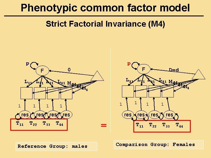 Phenotypic common factor model Strict Factorial Invariance (M 4) p p 1 res T