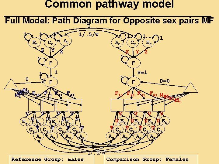 Common pathway model Full Model: Path Diagram for Opposite sex pairs MF 1 1