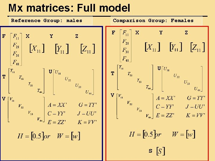 Mx matrices: Full model Reference Group: males F T V X Y U Z