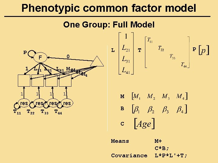 Phenotypic common factor model One Group: Full Model L p P T 0 F
