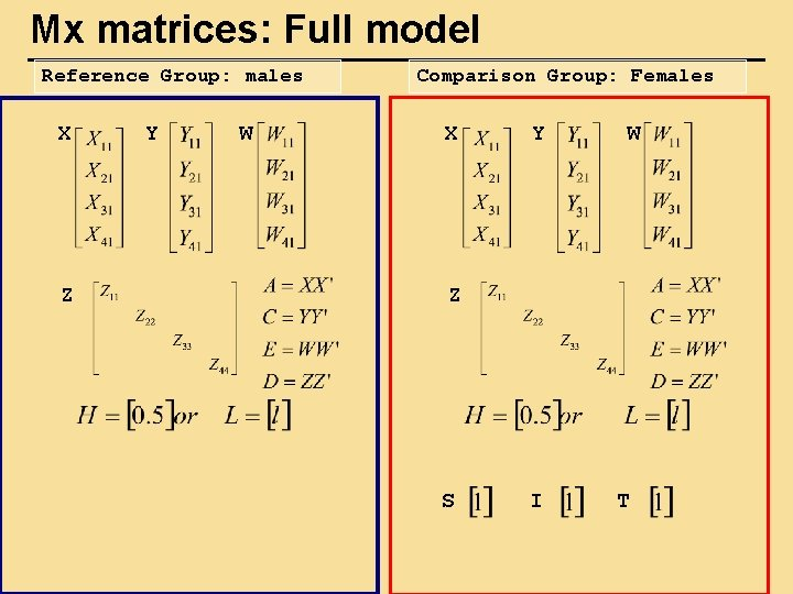 Mx matrices: Full model Reference Group: males X Z Y W Comparison Group: Females