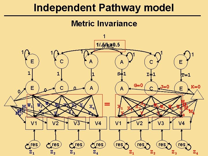 Independent Pathway model Metric Invariance 1 1 E C 1 0 C 0 1