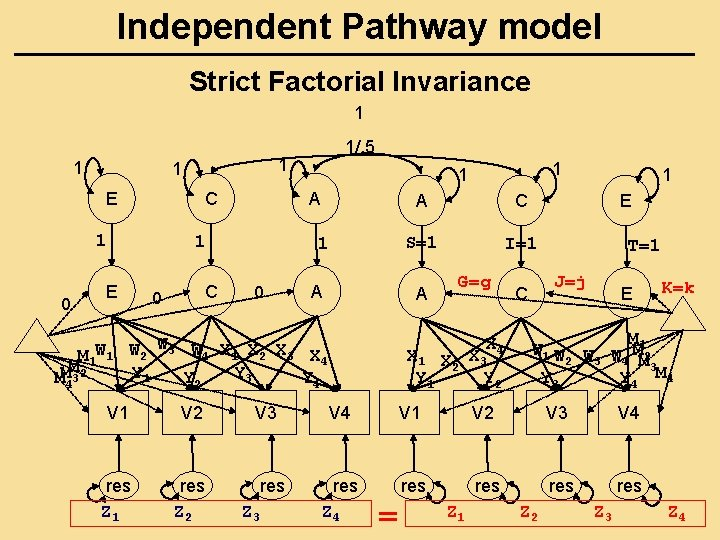 Independent Pathway model Strict Factorial Invariance 1 1 E C 1 0 C 0