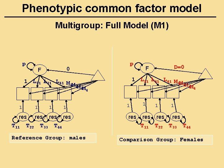 Phenotypic common factor model Multigroup: Full Model (M 1) p p 0 F 1