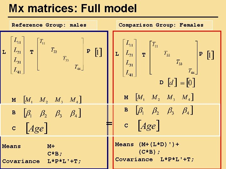 Mx matrices: Full model Reference Group: males L Comparison Group: Females P T L