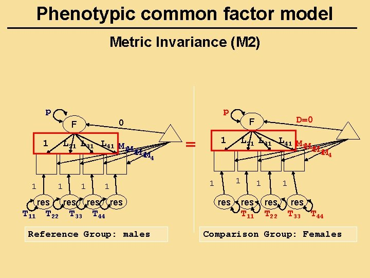 Phenotypic common factor model Metric Invariance (M 2) p p 1 1 L 21