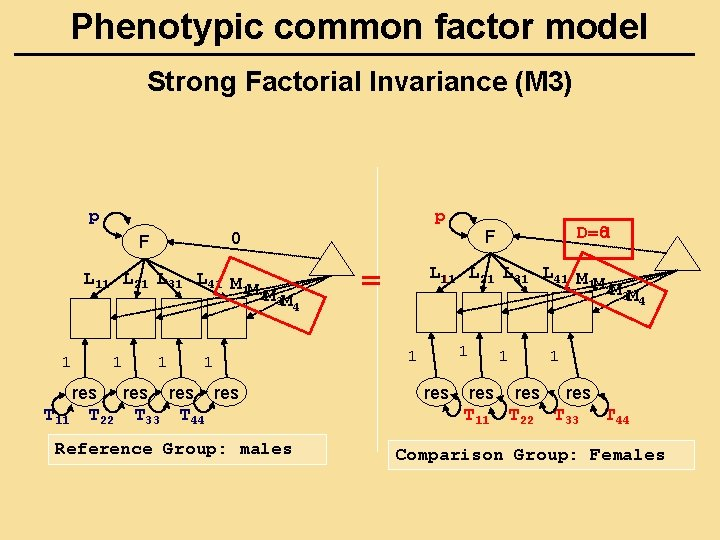 Phenotypic common factor model Strong Factorial Invariance (M 3) p p L 11 L
