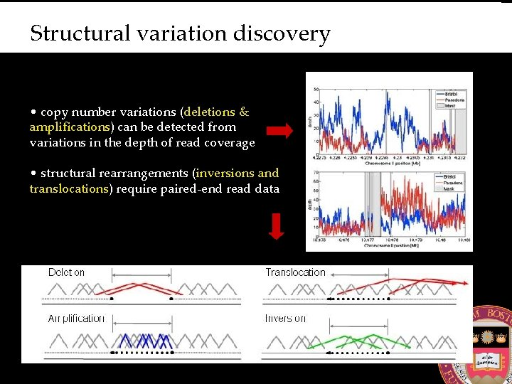 Structural variation discovery • copy number variations (deletions & amplifications) can be detected from