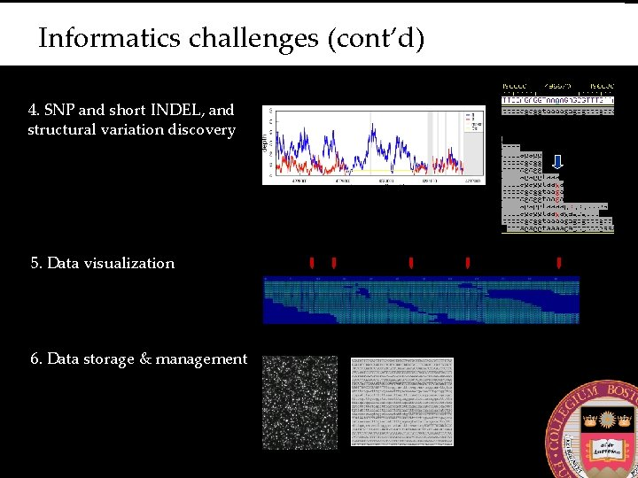 Informatics challenges (cont'd) 4. SNP and short INDEL, and structural variation discovery 5. Data