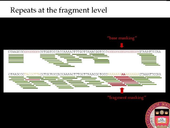 """Repeats at the fragment level """"base masking"""" """"fragment masking"""""""