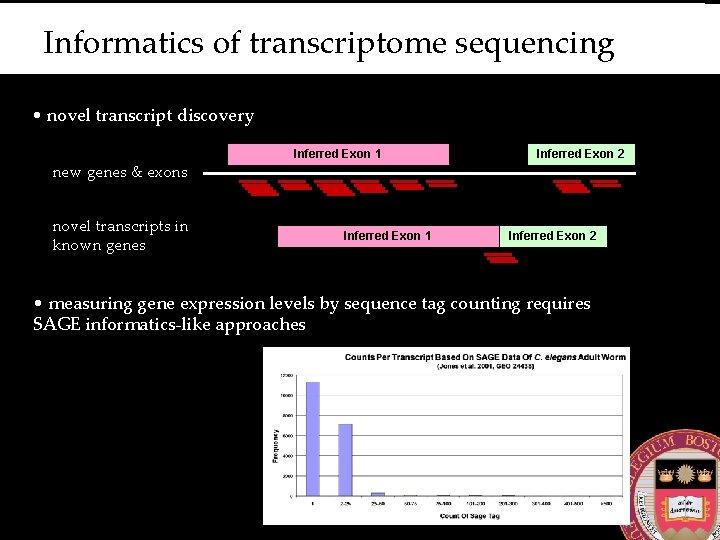 Informatics of transcriptome sequencing • novel transcript discovery new genes & exons novel transcripts