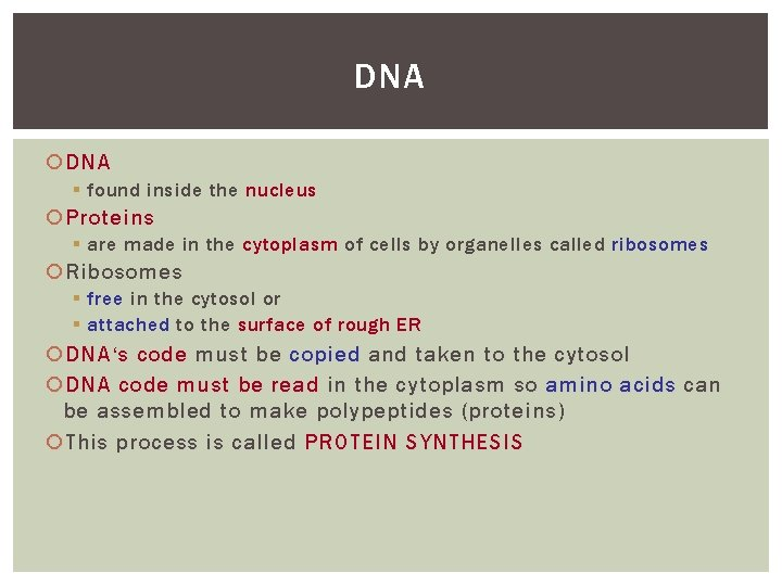 DNA § found inside the nucleus Proteins § are made in the cytoplasm of