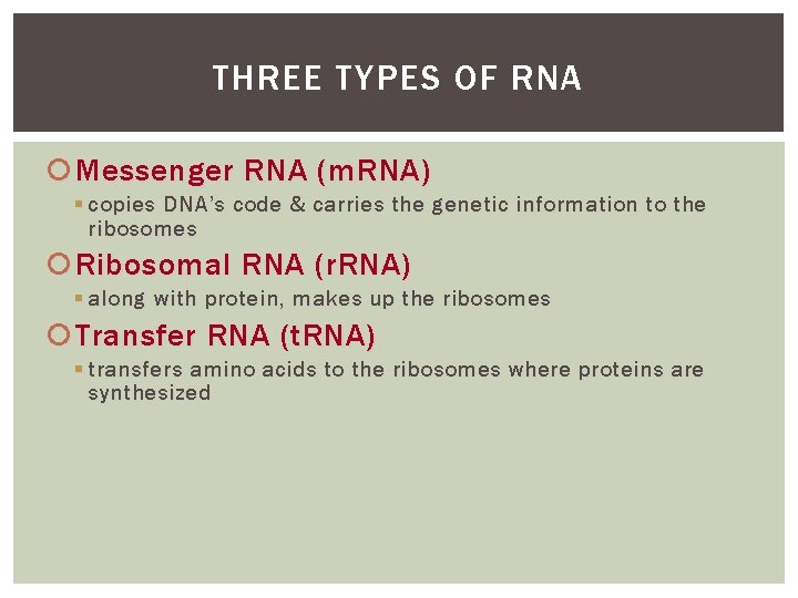 THREE TYPES OF RNA Messenger RNA (m. RNA) § copies DNA's code & carries
