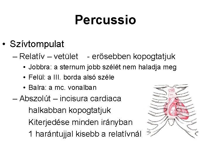 Percussio • Szívtompulat – Relatív – vetület - erősebben kopogtatjuk • Jobbra: a sternum