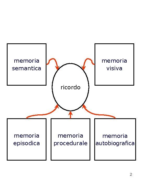 memoria semantica memoria visiva ricordo memoria episodica memoria procedurale memoria autobiografica 2