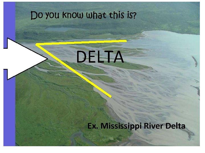 DELTA Ex. Mississippi River Delta