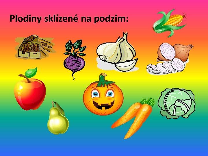 Plodiny sklízené na podzim: