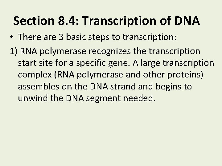 Chapter 8 From Dna To Proteins Section 8