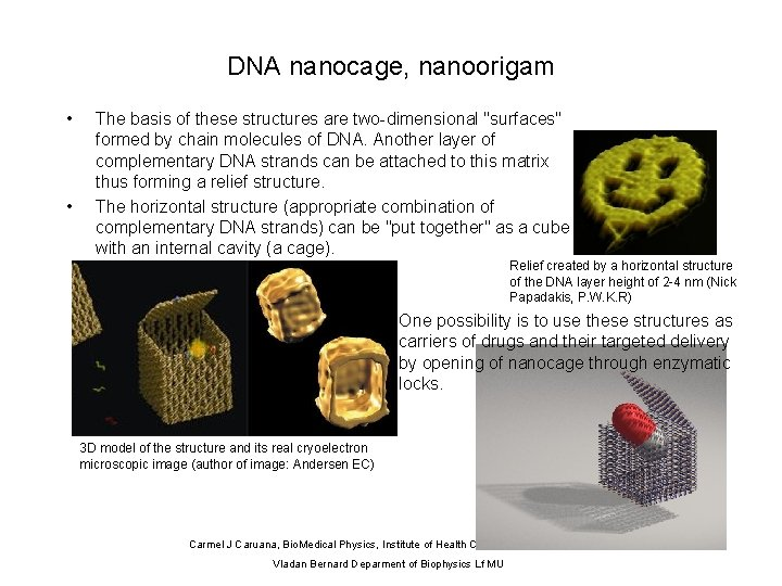 """DNA nanocage, nanoorigam • • The basis of these structures are two-dimensional """"surfaces"""" formed"""
