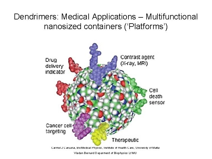 Dendrimers: Medical Applications – Multifunctional nanosized containers ('Platforms') Carmel J Caruana, Bio. Medical Physics,