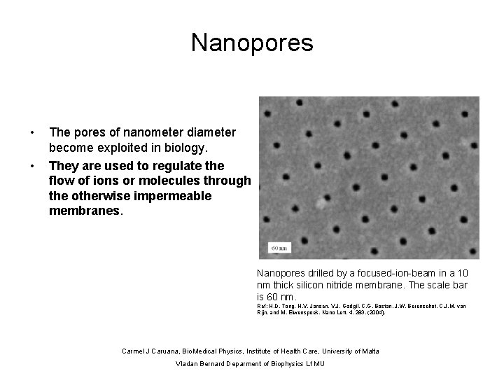 Nanopores • • The pores of nanometer diameter become exploited in biology. They are