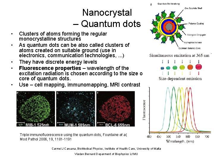 Nanocrystal – Quantum dots • • • Clusters of atoms forming the regular monocrystalline