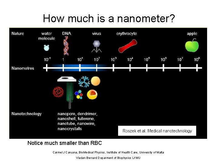 How much is a nanometer? Notice much smaller than RBC Carmel J Caruana, Bio.