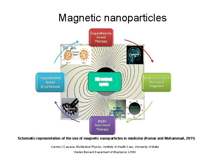 Magnetic nanoparticles 500 nm Schematic representation of the use of magnetic nanoparticles in medicine