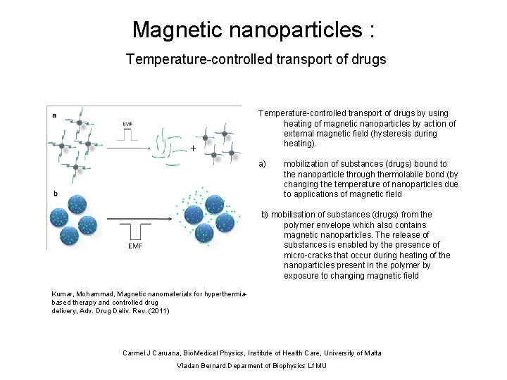 Magnetic nanoparticles : Temperature-controlled transport of drugs by using heating of magnetic nanoparticles by