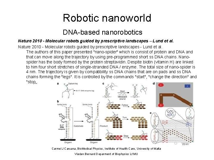 Robotic nanoworld DNA-based nanorobotics Nature 2010 - Molecular robots guided by prescriptive landscapes –