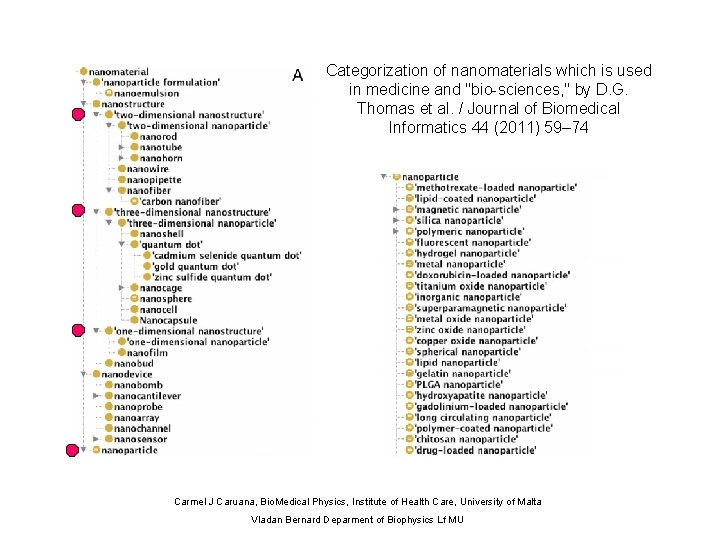 """Categorization of nanomaterials which is used in medicine and """"bio-sciences, """" by D. G."""