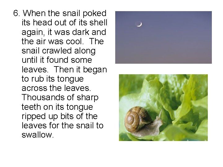 6. When the snail poked its head out of its shell again, it was