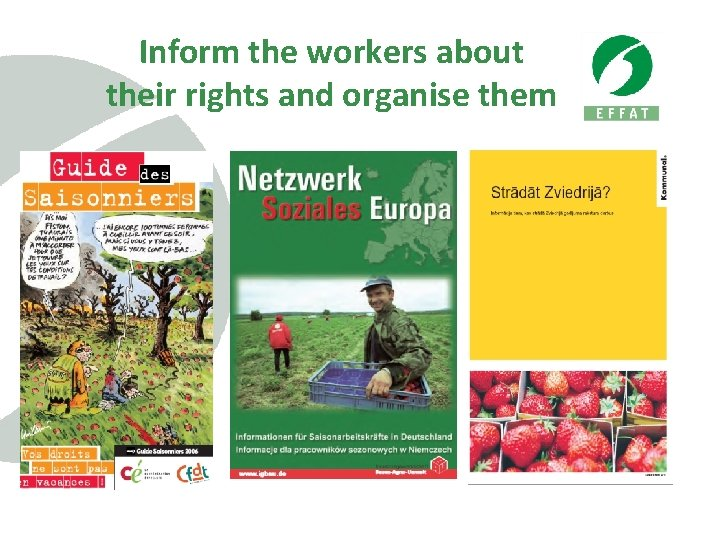 Inform the workers about their rights and organise them