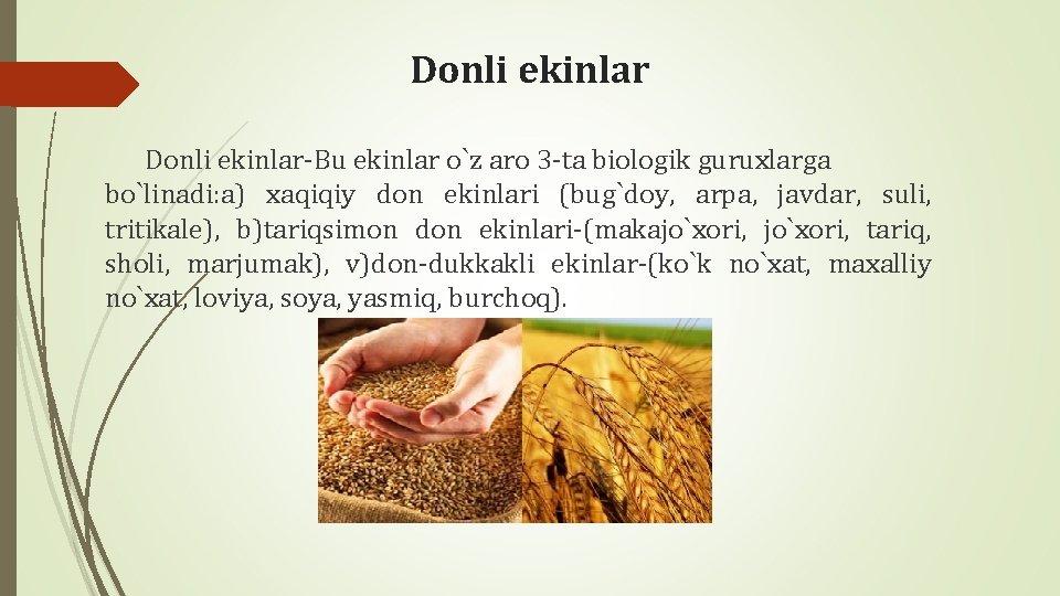 Donli ekinlar-Bu ekinlar o`z aro 3 -ta biologik guruxlarga bo`linadi: a) xaqiqiy don ekinlari