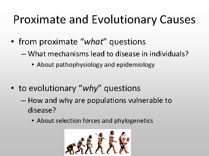 """Proximate and Evolutionary Causes • from proximate """"what"""" questions – What mechanisms lead to"""