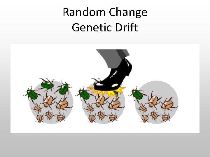 Random Change Genetic Drift