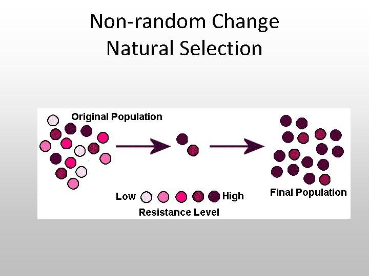 Non-random Change Natural Selection