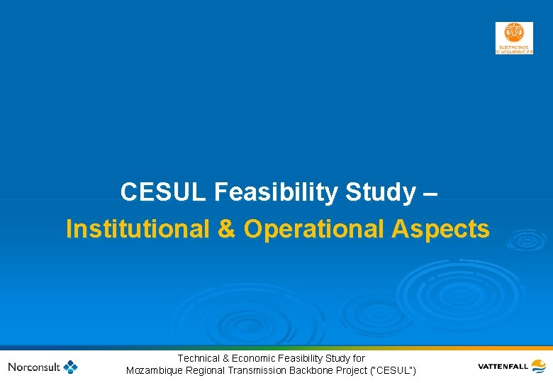CESUL Feasibility Study – Institutional & Operational Aspects 49 © Vattenfall AB Technical &