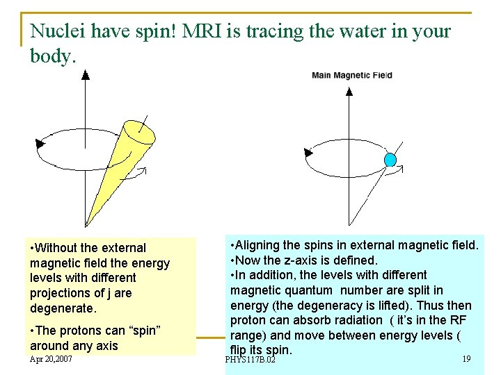 Nuclei have spin! MRI is tracing the water in your body. • Without the