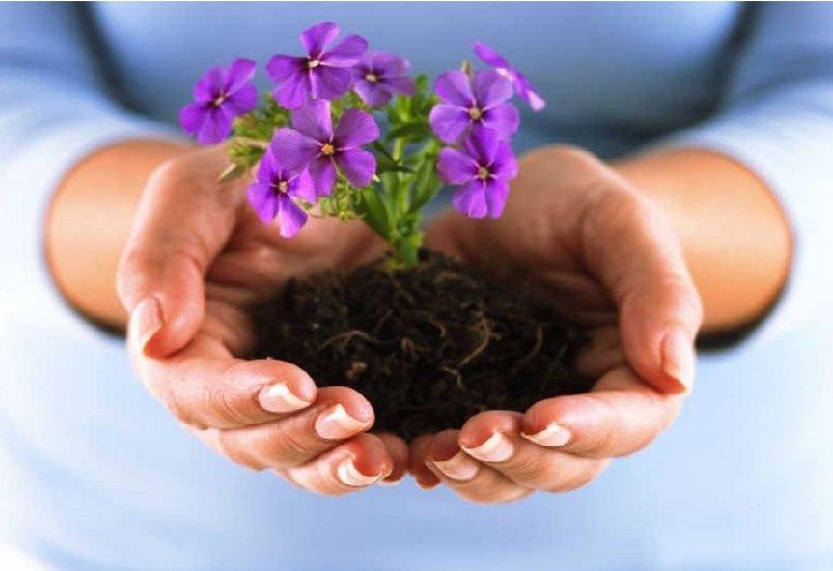 Puoselėk savo vidinį sodą: jis visur tave lydės. Ir suteiks tau jėgų gyventi.