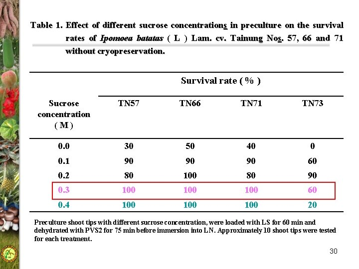 Table 1. Effect of different sucrose concentrations in preculture on the survival rates of