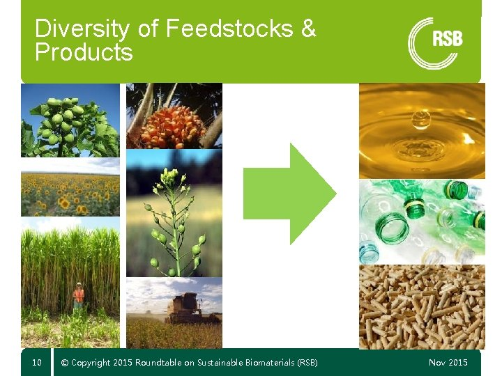 Diversity of Feedstocks & Products 10 © Copyright 2015 Roundtable on Sustainable Biomaterials (RSB)